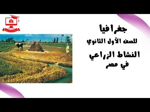جغرافيا للصف الأول الثانوي 2021 (ترم 2 ) الحلقة 6 –  النشاط الزراعي في مصر