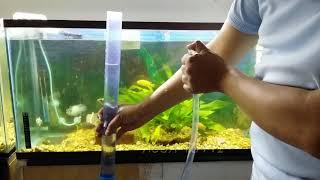 limpiar y sifonar un acuario
