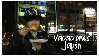 Vacaciones en Japón (Aiko y Akira)