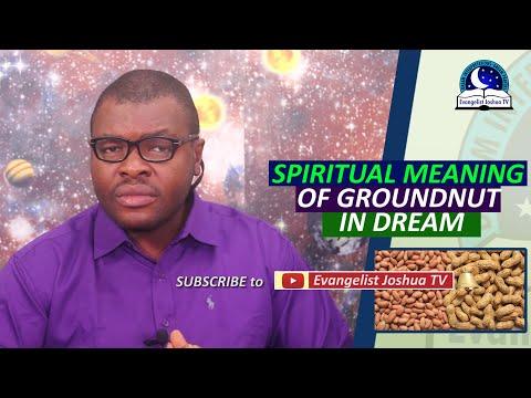 SPIRITUAL MEANING OF GROUNDNUT IN DREAM - Biblical Peanut Dream