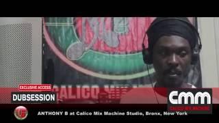 ANTHONY B - RAID THE BARN ~ Holding Firm Riddim -D-log (Dub Log) 22
