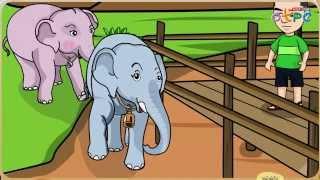 สื่อการเรียนการสอน ใบโบก ใบบัว ป.1 ภาษาไทย