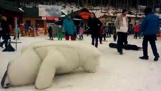 Приколы. Медведь нападает на туристов. Буковель