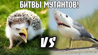 Крафтим Мутантов! - Mutant Fighting Cup