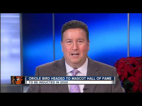WMAR 2 News Latest Headlines | December 12, 11pm