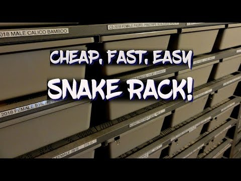 How to build a cheap, fast, and easy snake rack