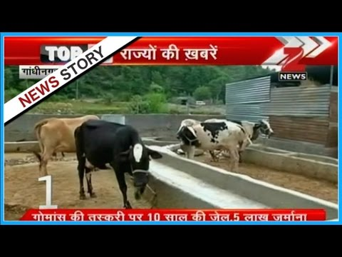 Strict law made against cow slaughtering in Gujarat