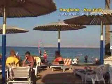 Seagull Resort (Blue Paradise)****