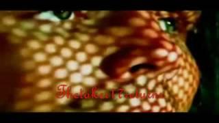 Jeff Hardy-Bleed For Me