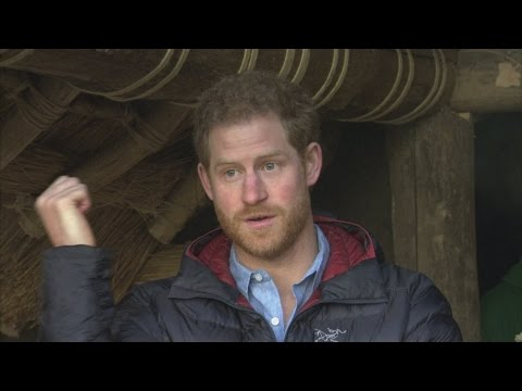 Prince Harry defends veterans'