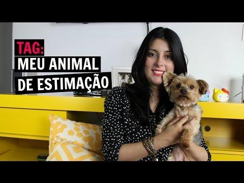 Tag: Meu animal de estimação | Canal Jujuba Sena