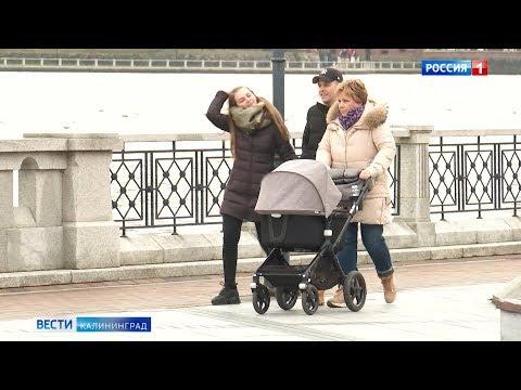 После послания Владимира Путина в Калининградской области осенью ожидают «бэйби-бум»