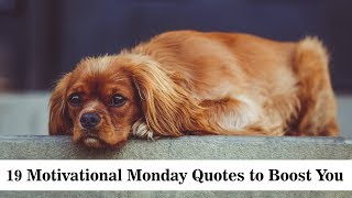 19 Motivational Monday Quotes To Boost You | Sameer Gudhate