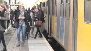 Rond het Oisterwijks station