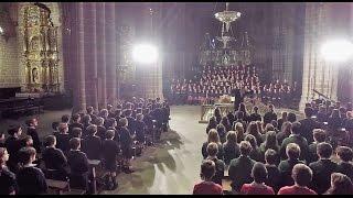 500 vozes felicitam o Papa Francisco no seu 80º aniversário de nascimento