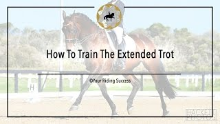 How To Train The Extended Trot - Dressage Mastery TV Ep163