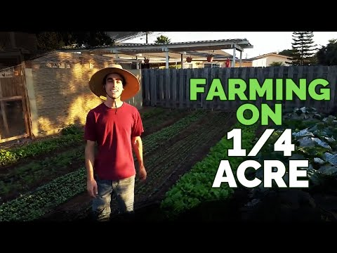 Quitting Your Job To Farm on a Quarter Acre In Your Backyard?