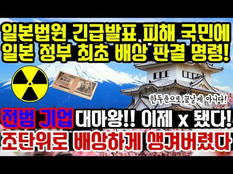 일본법원 피해 국민에 정부 최초 배상!