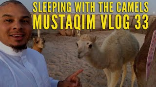 preview picture of video 'Sleeping With The Camels '