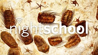 NightSchool: The Fossil Record