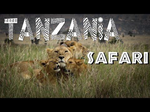 Tanzania SAFARI | Serengeti, Ngorongoro Crater & Tarangire | African Safari