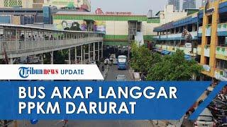 36 Bus AKAP Ditindak, Kedapatan Langgar PPKM Darurat dan Angkut Penumpang dari Terminal Bayangan