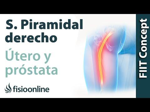 Maschi recensioni prostata massaggiatore