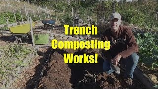 Trench Composting: Start to Finish!
