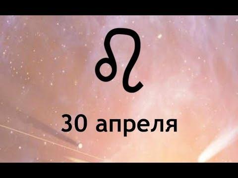 Символ года дракон гороскоп
