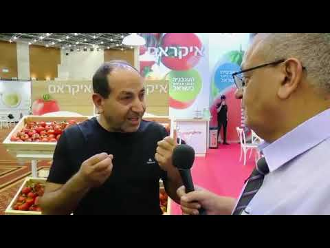 """רמי לוי: """"כל עוד המחיר שפוי - אני מתחייב לרכוש רק עגבניה ישראלית"""""""
