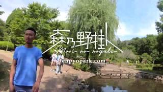 「森乃野掛」イベントレポート動画