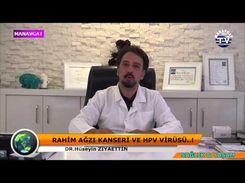 Human papillomavirus vaccine release date