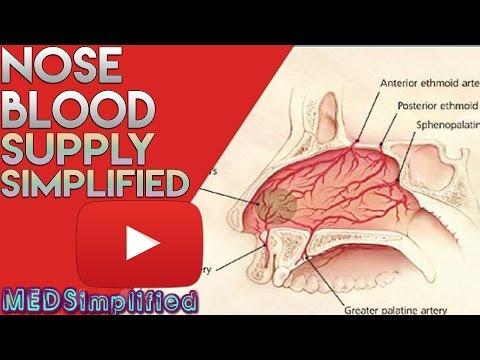Cum se tratează papiloamele pe corp medicamente