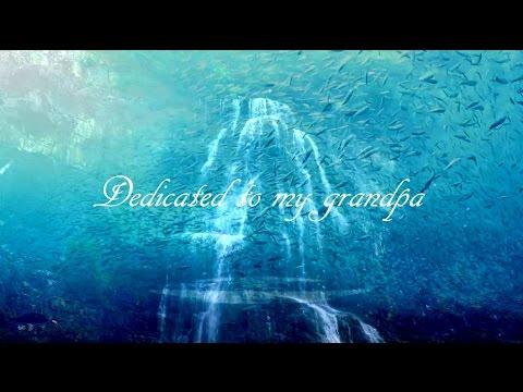 Emotional Music & Beautiful Nature Video - Grandpa (HD)