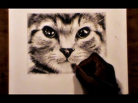 Drawing A Cute Kitten