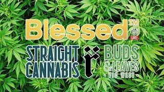 "EXPERT JOINTS LIVE!   ""Blessed With Cannab Liss Leaves"""