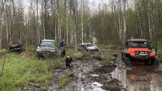 Тяжелые джипы против нивы на ковровых болотах