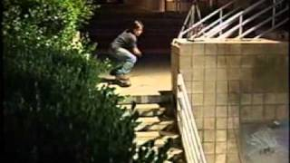 Emerica - This is Skateboarding