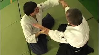 Fujita Masatake - Seminar in Hungary (2003)