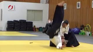 Συμμετοχή του Aikido North Athens στο σεμινάριο του Michel Erb