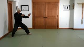 Pinan Nidan Kata Introduction