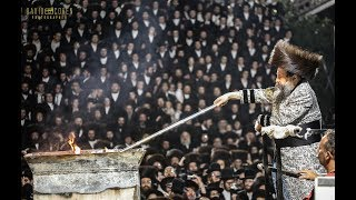 Bobov Rebbe 45 in Miron - האדמו