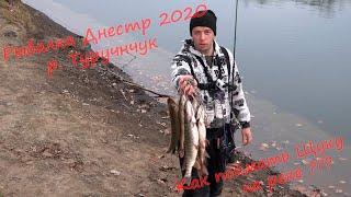 Клев рыбы в измаиле на январь 2020 г