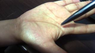 independent head and life line sample palm palmistry