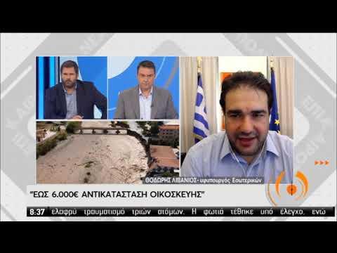 """Θ.Λιβάνιος   Τα οικονομιά μέτρα για τους πληγέντες απο τον """"ΙΑΝΟ""""   21/09/2020   ΕΡΤ"""