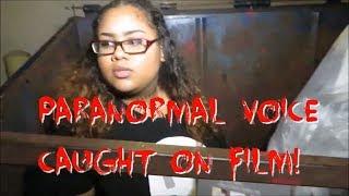 DUMPSTER DIVING MEGA PLANNER SCORE!! | BLENDED ABODE