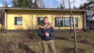 Финский дом 1986г. Дом где живут мои родители.