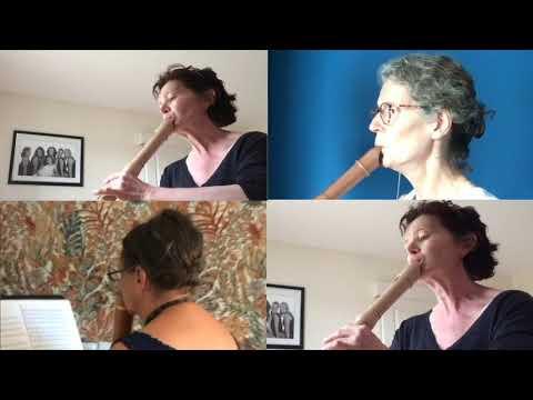 Flûte à bec