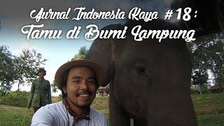 Jurnal Indonesia Kaya Episode 18: Tamu di Bumi Lampung