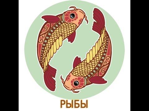 рыбы - что подарить?
